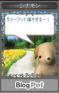 blogpet4.jpg