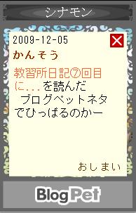 blogpet6.jpg
