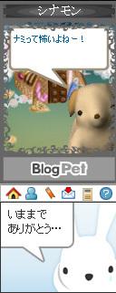 blogpet3.jpg